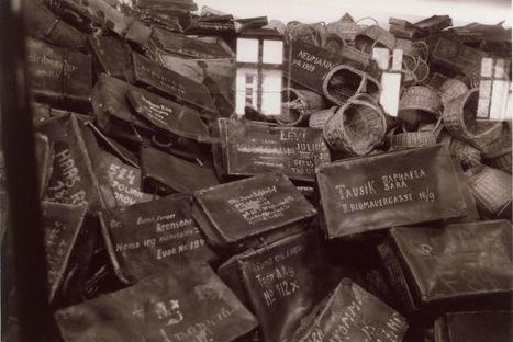 """Annette Wieviorka : """"Il n'est pas indispensable d'aller visiter Auschwitz pour savoir ce qu'a été la Shoah""""   ALIA - Atelier littéraire audiovisuel   Scoop.it"""