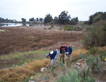 The Southern California Wetland Recovery Project's 2014-2015 Community Wetland Restoration Grant Program: Request for Proposals - California Aquaculture Association | Ecological Restoration | Scoop.it