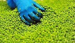 L'industrie améliore son efficacité énergétique - Natura Sciences | Actu de l'industrie | Scoop.it