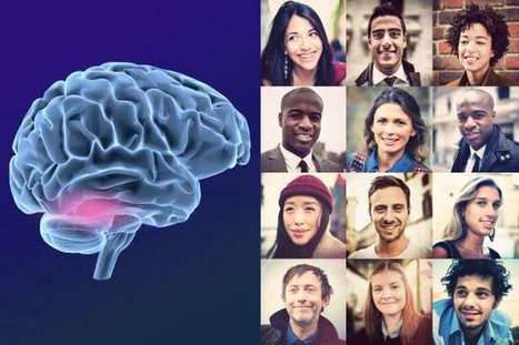 Neuroscientists pinpoint neurons that help primates tell faces apart | Social Neuroscience Advances | Scoop.it