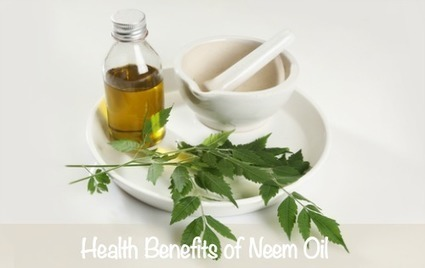 Neem Oil Benefits for Skin Care | Natural Skin Care Topics | Scoop.it