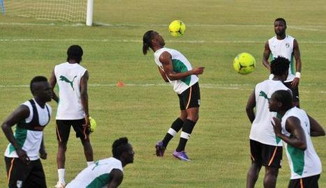 WWW.IMATIN.NET :::: Football / Encadrement technique des Éléphants de Côte d'Ivoire : Les choses se précisent   Cote Ivoire   Scoop.it