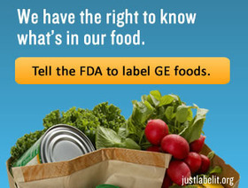 GMOs 101 | Organic. It's Worth It | YOUR FOOD, YOUR ENVIRONMENT, YOUR HEALTH: #Biotech #GMOs #Pesticides #Chemicals #FactoryFarms #CAFOs #BigFood | Scoop.it