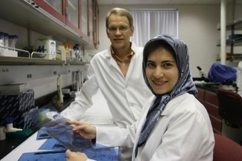 Mosquito may offer clues to malaria control, Virginia Tech researchers say - Iranian | Encyclomalaria | Scoop.it