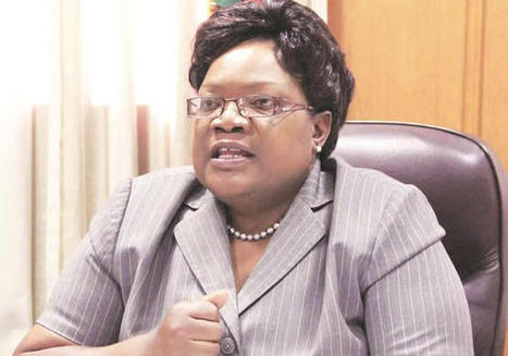 Partnerships key in unlocking rural potential, says Mujuru | The Herald | NGOs in Human Rights, Peace and Development | Scoop.it
