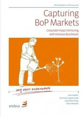 Capturing BoP Markets - Endeva | Inclusive Business in Asia | Scoop.it