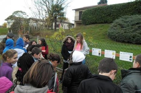 Aignan. Le collège Vert réduit ses déchets | College vert | Scoop.it