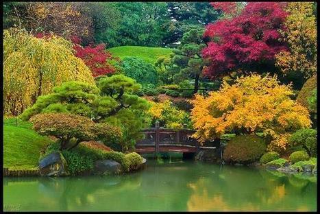 Twitter / SuzanneLepage1: Japanese Garden in Autumn! ... | Japanese Gardens | Scoop.it