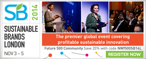 """""""Coopetition"""": A Radical Approach to Sustainability 