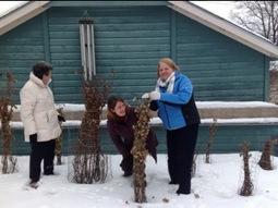 Visiting gardening friends in Minnesota | Hydroponics World | Scoop.it