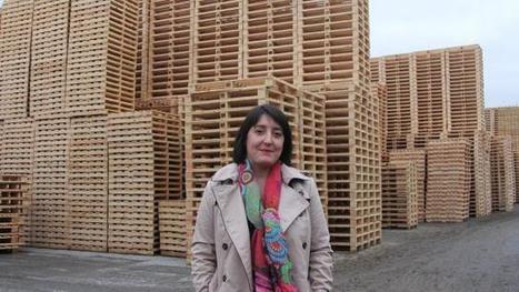 Aprobois. Le projet d'usine de granulés de bois se précise | Salon Bois Energie du 12 au 22 mars 2015 à Nantes | Scoop.it