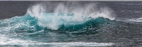 L'océan est malade, mais il va se venger sur l'homme | Ca m'interpelle... | Scoop.it