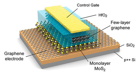 Monolayer mastery: Graphene and molybdenite combined to create flexible flash ... - ExtremeTech | Trends of Information Technology within the next 10 years | Scoop.it