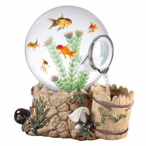 Amazing Fish tanks for Sale   Openads   Free Indian Classifieds           www.openfreeads.com   Scoop.it