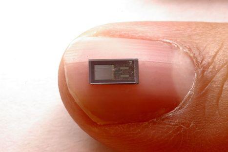 Surveiller le cerveau avec un implant soluble   Prospectives et innovations technologiques   Scoop.it