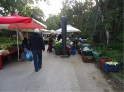 Organic Farmers' markets : Sustainable Food in Urban Communities | Food Security | Scoop.it