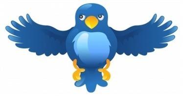twdocs, para exportar búsquedas de Twitter en formato PDF, doc, xml, html… | Edu-Recursos 2.0 | Scoop.it