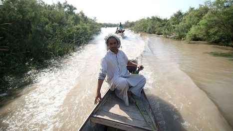 Iraq marshlands named Unesco World Heritage Site - BBC News | Jeff Morris | Scoop.it