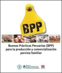 Buenas Prácticas Ganaderas (BPG) para la producción y comercialización porcina familiar — INTA | Producción de porcinos | Scoop.it