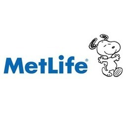 Metlife Individual Disability Insurance | Insuring Income | Scoop.it