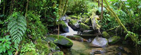 Tourisme durable | ecotourisme, tourisme durable | Le monde rural et touristique | Scoop.it