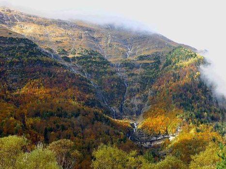 Automne en Pineta - Refugio de Pineta | Facebook | Vallée d'Aure - Pyrénées | Scoop.it
