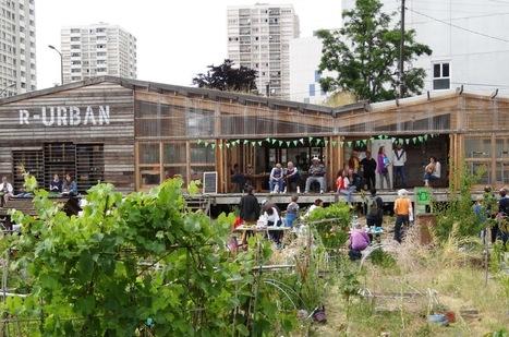Le «broutalisme», une poésie des vertes prairies urbaines | Nature en Ville | Scoop.it
