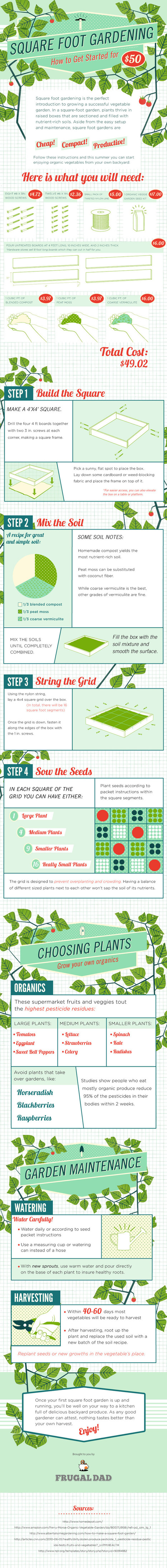 How to start your own square foot garden | Gardening Life | Scoop.it