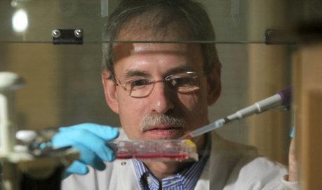Scientists make significant anti-aging breakthrough | Futurewaves | Scoop.it