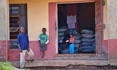 Swaziland government sells maize donated by Japan and banks the cash   IB Development Economics   Scoop.it