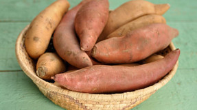 GM-free sweet potatoes answer to vitamin A deficiency? | Erba Volant - Applied Plant Science | Scoop.it