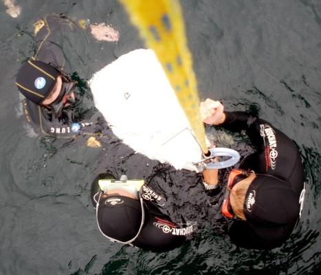 Stages Apnée été 2012   Pêche et chasse sous-marine Beuchat   Scoop.it