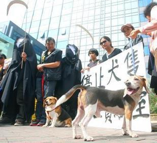 Activists protest animal testing - Taipei Times | Earth Island Institute Philippines | Scoop.it
