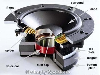 Making Audio Speakers from Household Materials | Carolina.com | PhysicsLearn | Scoop.it
