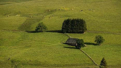 Aubrac, un désert verdoyant | L'info tourisme en Aveyron | Scoop.it