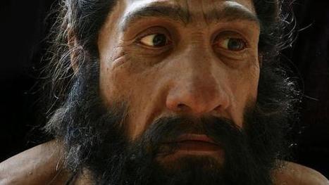 ¿Por qué el rostro humano es tan diferente de el de los demás mamíferos?   La Mula   Kiosque du monde : A la une   Scoop.it