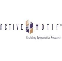 Epigenetic Tools and Databases - EpiGenie | Epigenetics | Scoop.it