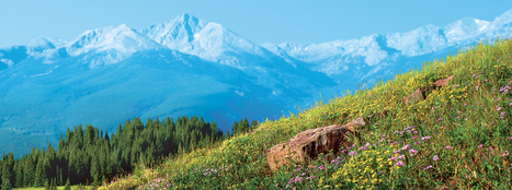 The Importance of Brand | Visit Vail Valley Blog | Brand & brand management | Scoop.it