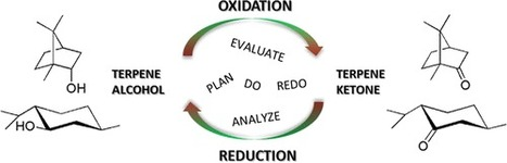 Transforming Undergraduate Students into Junior Researchers: Oxidation–Reduction Sequence as a Problem-Based Case Study | Chemed | Chemistry Education | Scoop.it