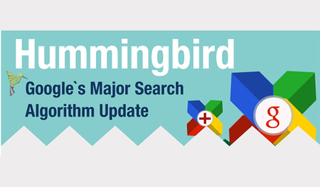 Google Hummingbird: An Update That Could Dramatically Affect Your SEO   Marketing resources   Scoop.it