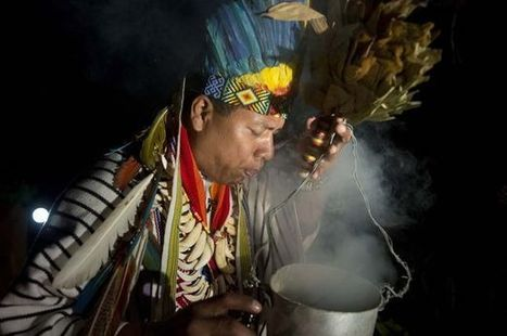 """Brazilian murderers given """"consciousness expanding"""" drugs during prison rituals   Ayahuasca  アヤワスカ   Scoop.it"""