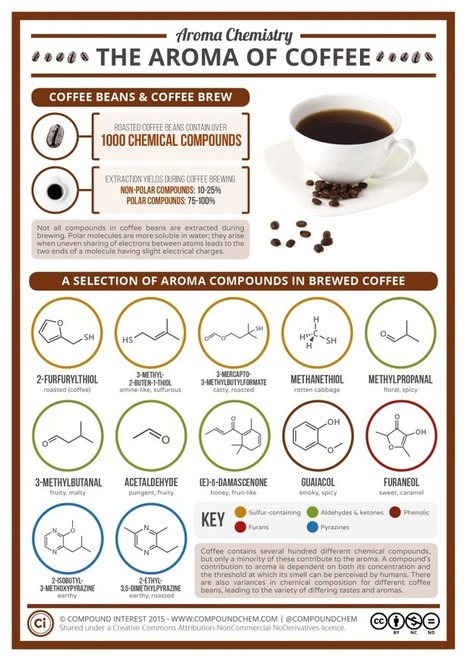 The Chemical Compounds Behind the Aroma of Coffee | Coffee News | Scoop.it