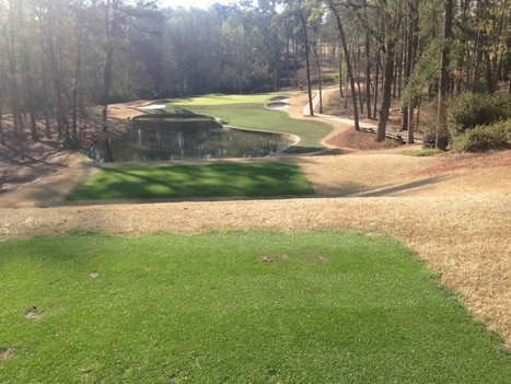 Endurant FW turf colorant: Amazing at Augusta - Geoponics Corporation | Turf Maintenance | Scoop.it