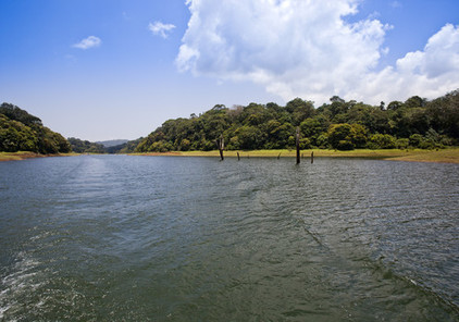 Kerala Tour Trips - All About Kerala Tour Trips   Holidays Information-India and World   Scoop.it
