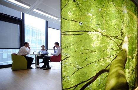 UP Magazine - Quelle est l'empreinte environnementale numérique d'un salarié ? | Responsabilité Sociétale des Entreprises et des Organisations | Scoop.it