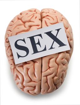 Good Blood Flow Means Better Sex   Last Longer In Bed and Enjoy Better Sex   Scoop.it