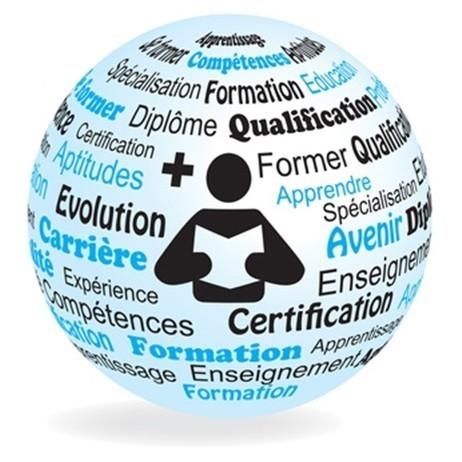 Vers la suppression de la cotisation obligatoire des entreprises pour la formation ? | Financement de la formation | Scoop.it