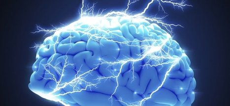 7 Books That Will Train Your Brain to Overachieve | Interesting Reading | Scoop.it
