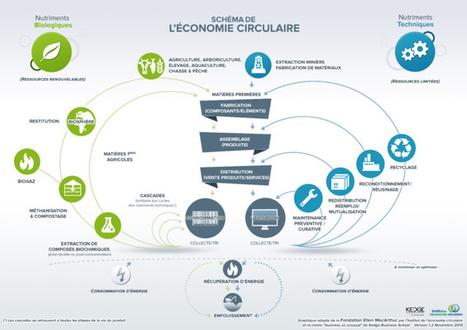 #EconomieRéelle : Qu'est-ce que l'économie circulaire ? | Economies alternatives ..... | Scoop.it