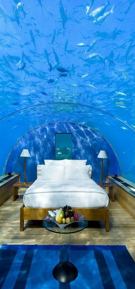 Who Would Love To Spend A Night Here? | Nature and Travel | Scoop.it